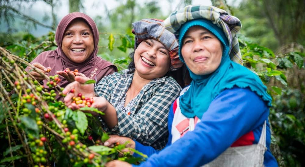 sumatra women