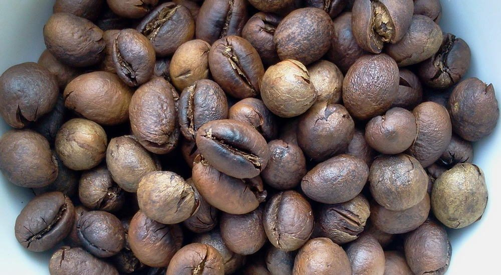 What-is-Peaberry-Coffee